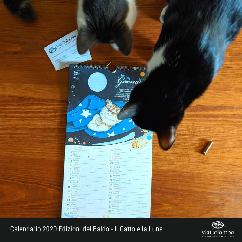 Calendario 2020 Il gatto e la luna (Icaro e Teti)